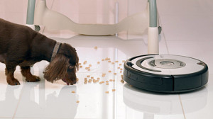 size_810_16_9_iRobot-Roomba-Pet-562